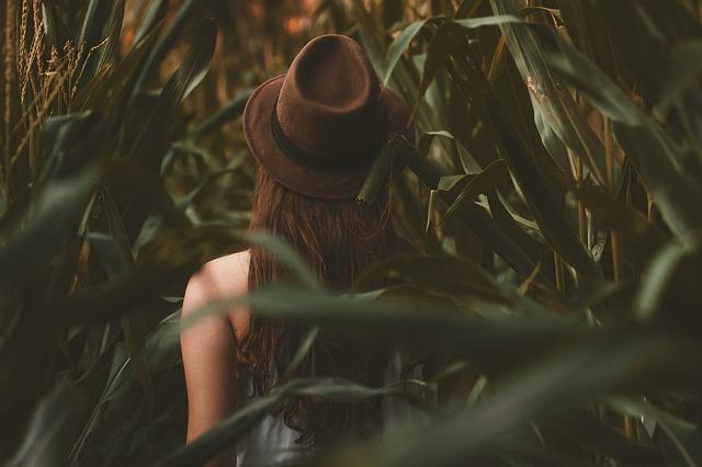 Activités amusantes le labyrinthe de maïs